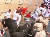 9cd4f32b189 SAN FERMIN  Бег быков в Памплоне » EventGuide